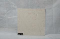 百特陶瓷 香格里拉 TFP066331 600*600