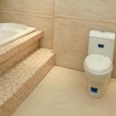 大将军陶瓷 防滑瓷片釉面砖 2-P48003 400*800