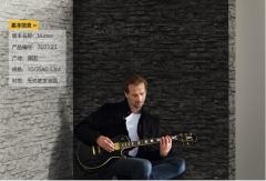 德国艾仕壁纸 纯进口 客厅卧室餐厅电视背景墙纸 现代自然风7071
